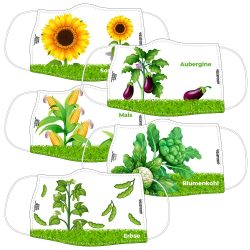 Biologie-Pflanzen HAUPTSCHULEPAKET